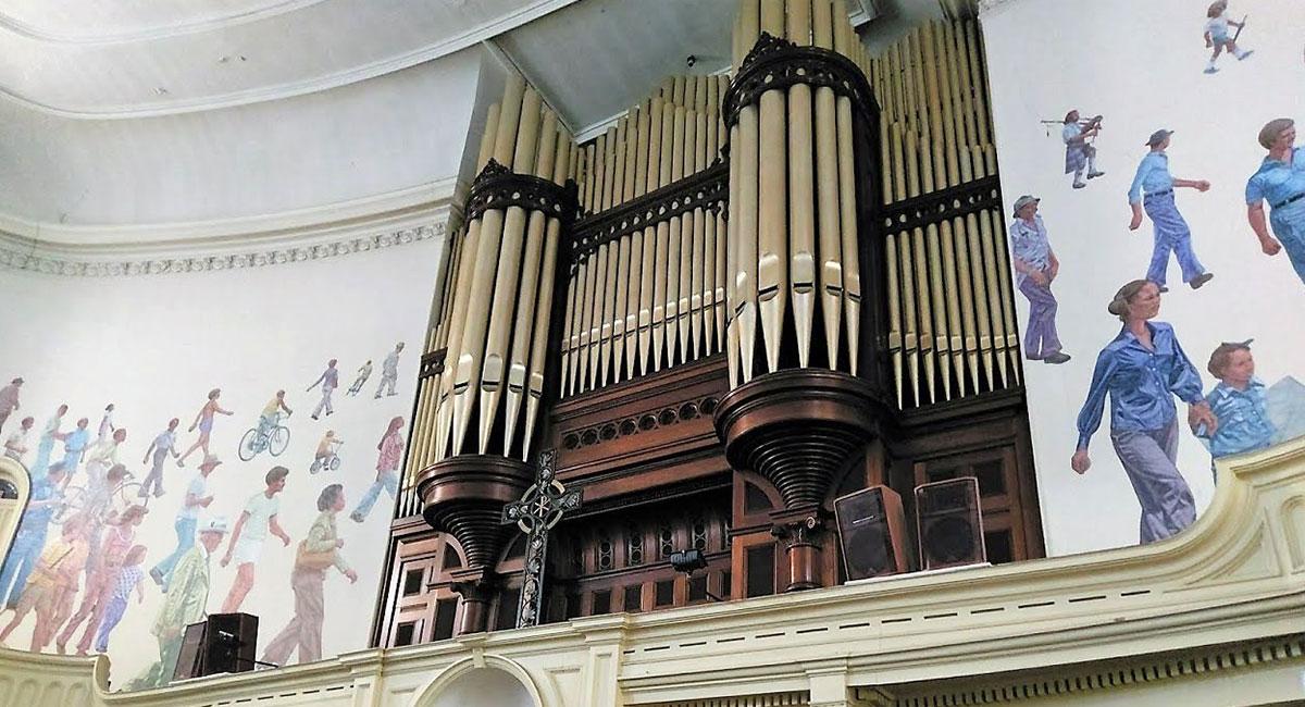 organ-1